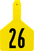 Z1 No-Snag Numbered Cow Ear Tags